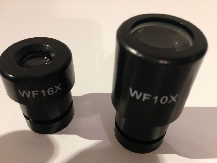 Aufbau eines Lichtmikroskops | Light Microscope