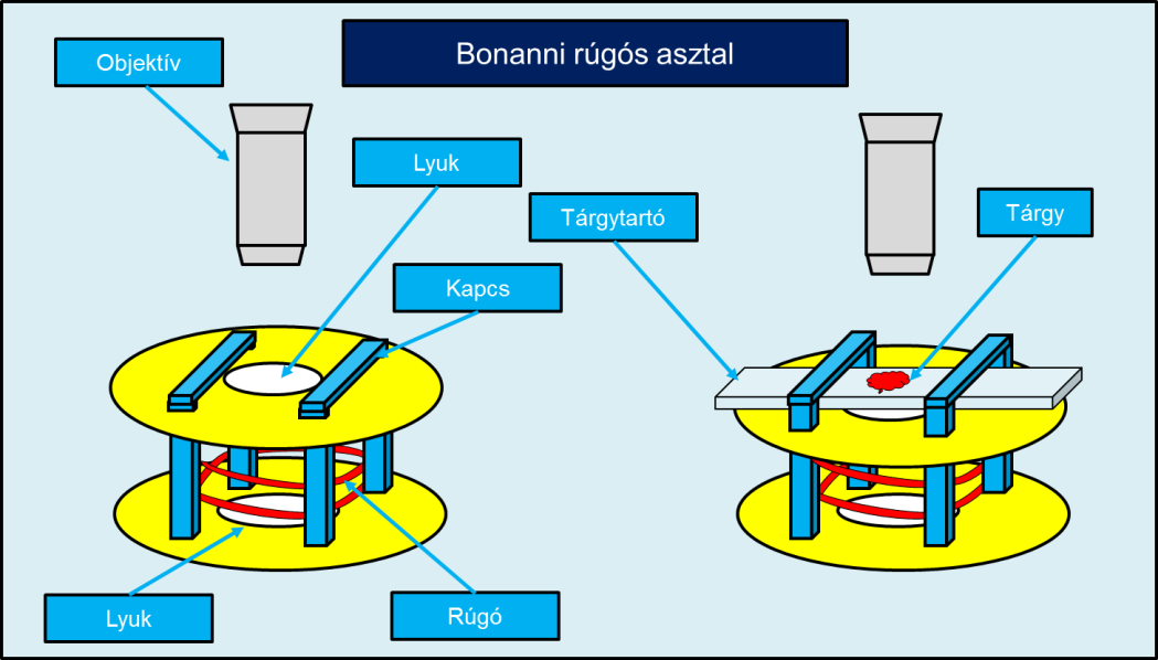 Filippo Bonanni: feltalált egy rúgós asztalt (Bonanni spring stage), amivel a tárgyakat alúlról lehetett megvilágítani