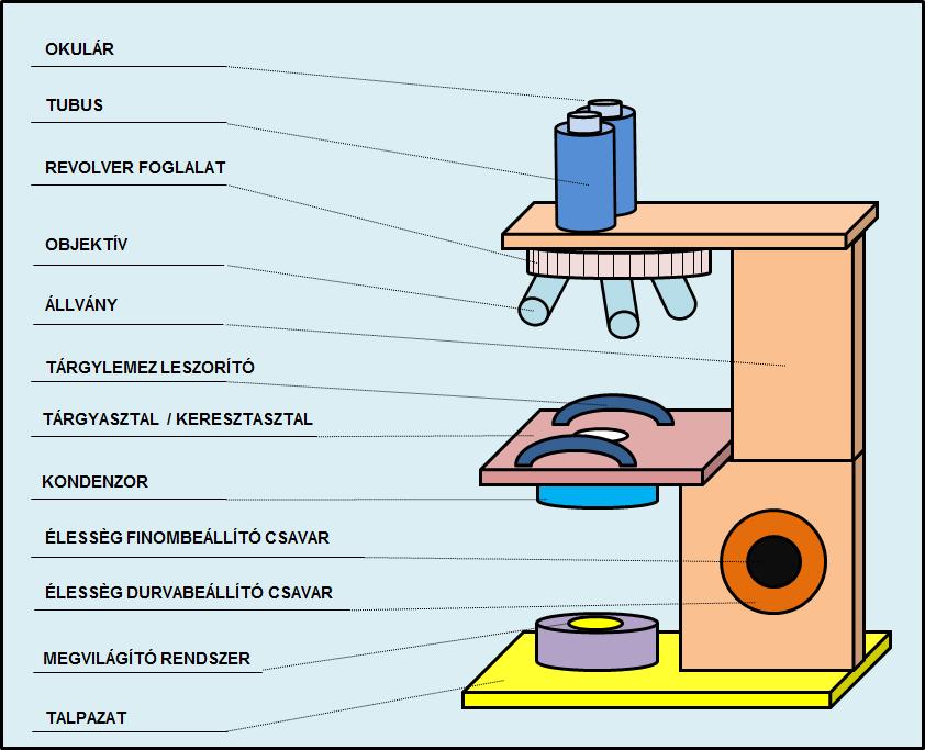 Mikroszkóp részei
