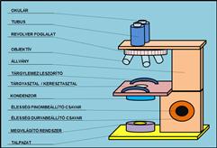Mikroszkóp részei download