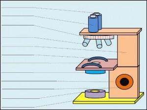 microscope (colored)