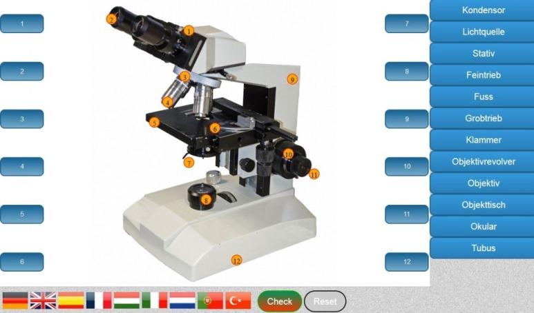 Aufbau Lichtmikroskop lernen - kostenlose Software